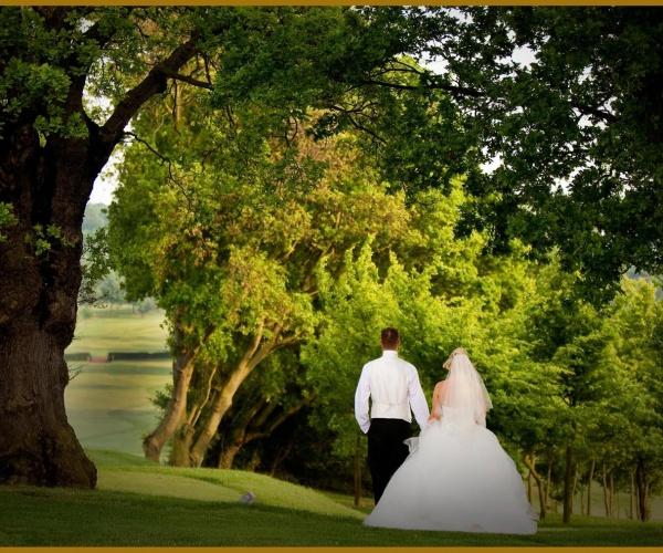 0 Wedding Image
